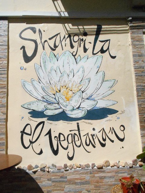 Vegan travel in Mérida - Shangri-La vegetarian restaurant