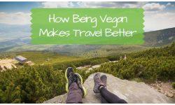 Vegan Benefits: How Being Vegan Makes Travel Better