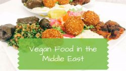 Vegan Food in the Middle East