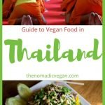 Vegan in Thailand Food Guide
