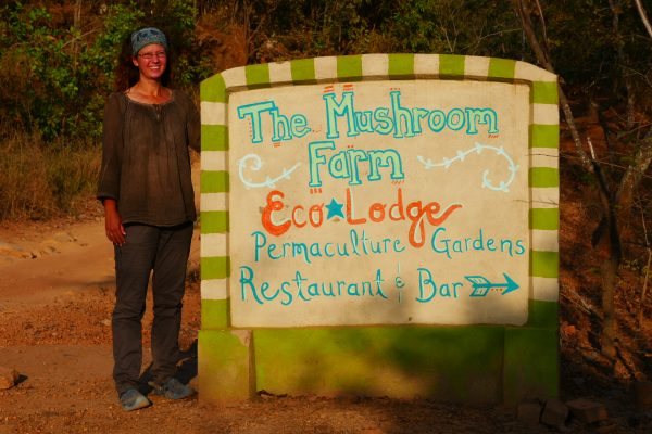 The Mushroom Farm - Malawi Food