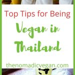 Vegan Thailand Food Guide
