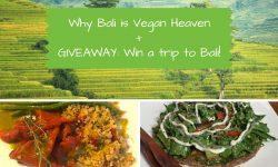 Giveaway Win a Trip to Bali - vegan Bali