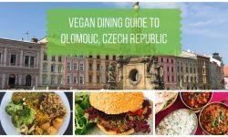 Vegan Olomouc Czech Republic
