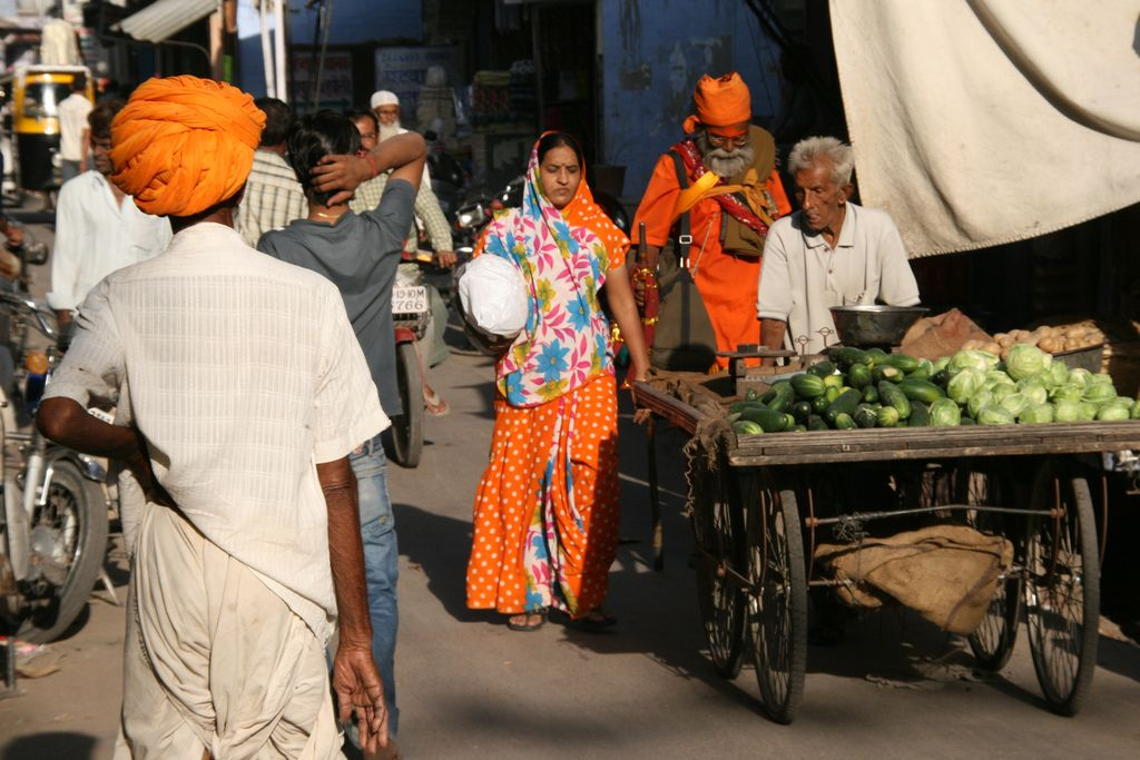 India vegetarian travel