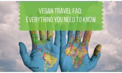 Vegan Travel FAQ - Everything You Need to Know