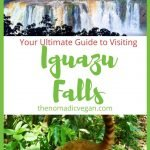 Your Ultimate Guide to Visiting Iguazu Falls in Brazil and Argentina