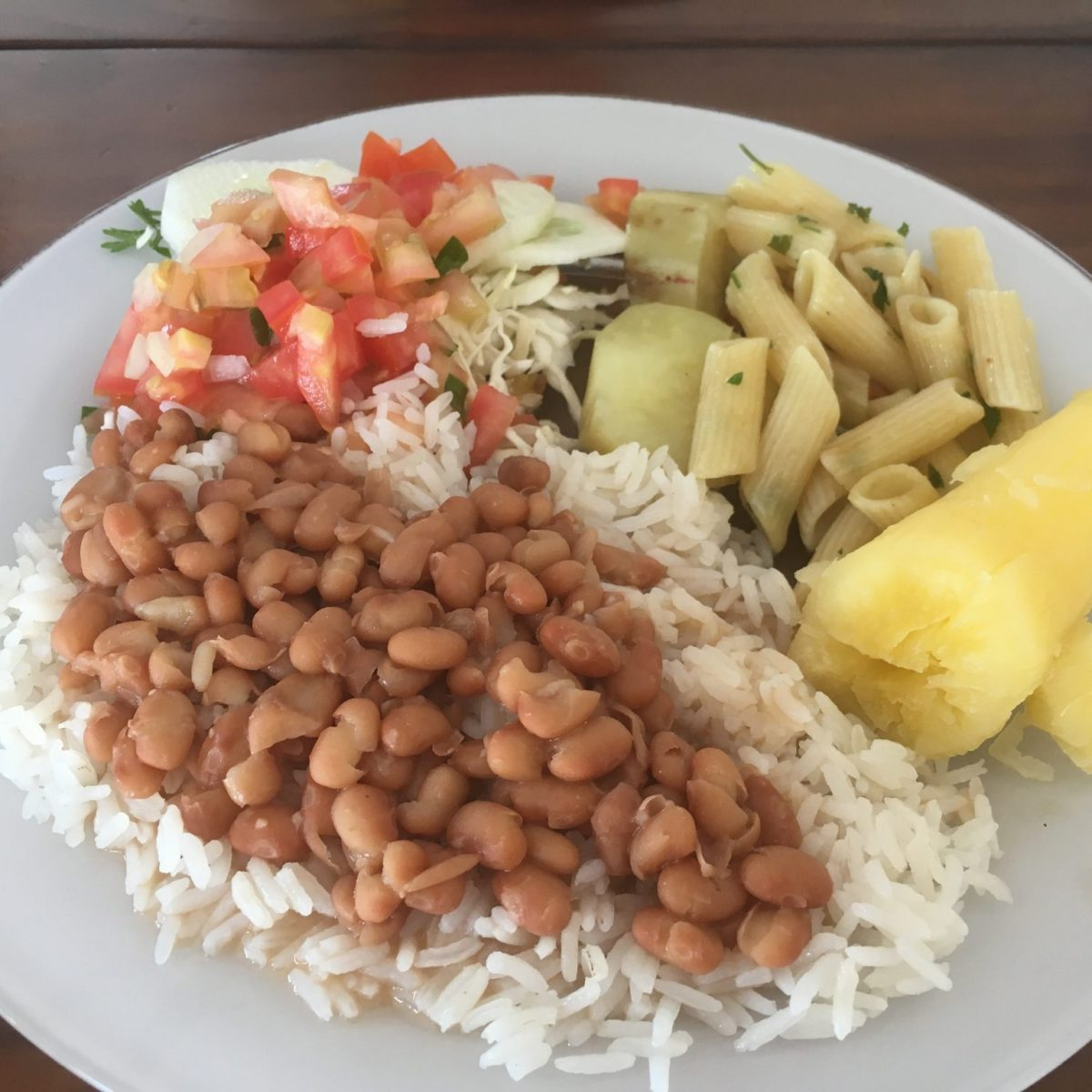 vegan food in the Pantanal Brazil