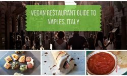 Vegan Naples Italy Restaurant Guide