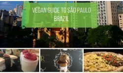 Vegan in São Paul Brazil - Best Restaurants, Shopping and Neighborhoods