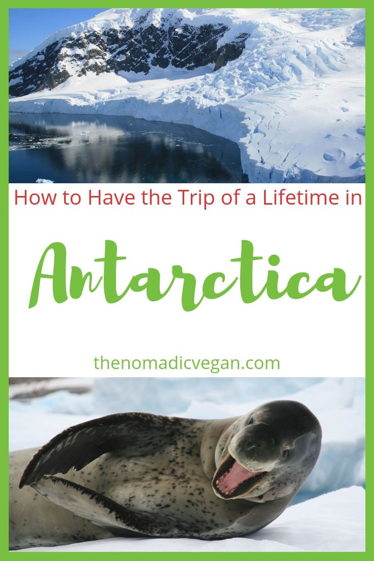 Have the Trip of Your Life on an Antarctica Cruise from Ushuaia Argentina
