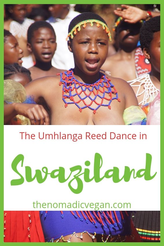 The Umhlanga Reed Dance in Swaziland