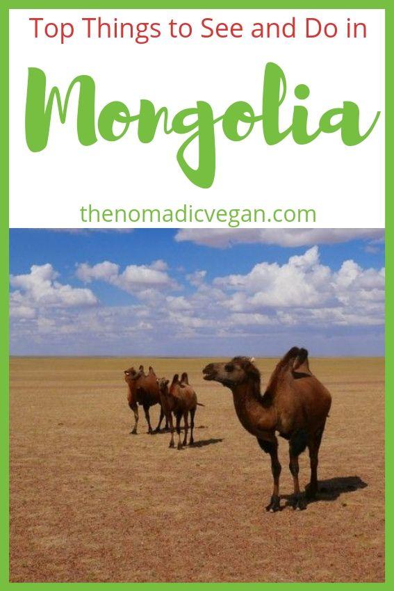 Mongolia Things to Do
