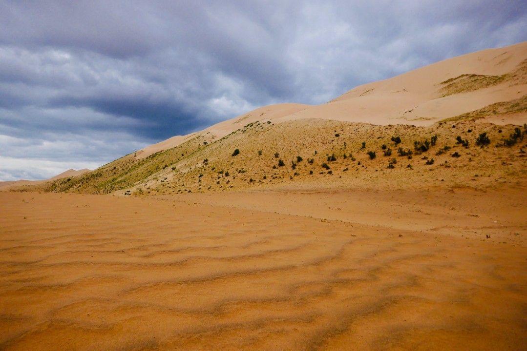 Khongoriin Els Sand Dunes, Gobi Desert Mongolia