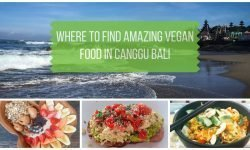 The Best Canggu Restaurants for Vegan Food