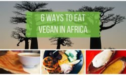 6 Ways to Find Vegan African Food in Africa