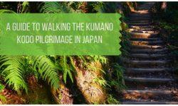 Guide to the Kumano Kodo Walk in Japan