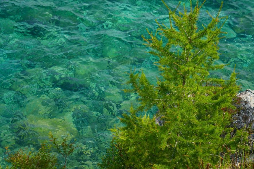 Clear lake water turquoise