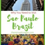 Why You Need to Visit Sao Paulo Brazil