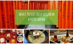 Vegan Kyoto: What to Eat in Kyoto Japan as a Vegan