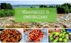 Guide to Vegan Food in Congo Brazzaville