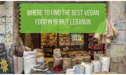 Vegan Restaurants in Beirut Lebanon