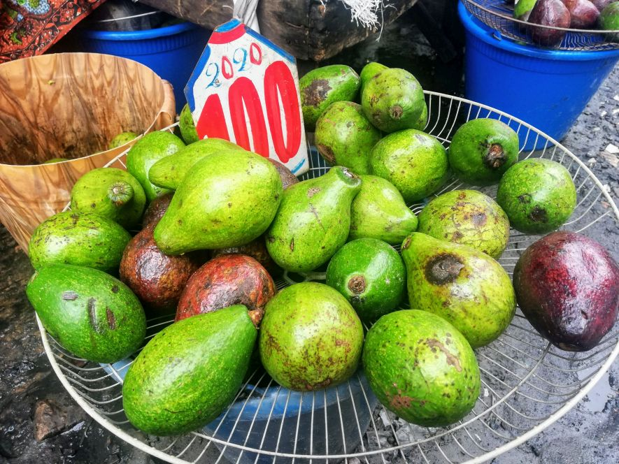 Avocados in the Congo