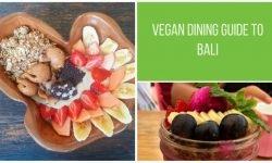 Vegan Bali Restaurant Guide