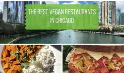 Best Vegan Restaurants Chicago