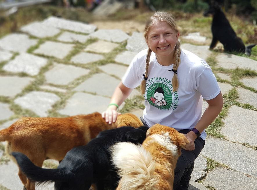 Dogs at Maya Foundation question mark