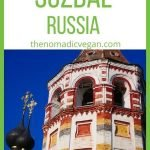 Suzdal Russia Perfect 1-Day Itinerary
