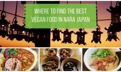 Vegan Nara Japan Restaurant Guide