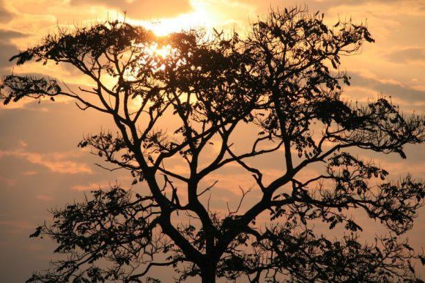 Sunrise in rural Rwanda
