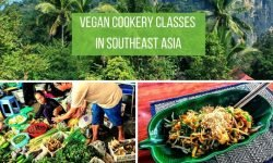 Vegan Cookery Classes in Southeast Asia