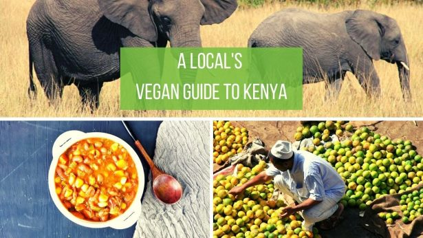 Vegan Kenya Travel Guide